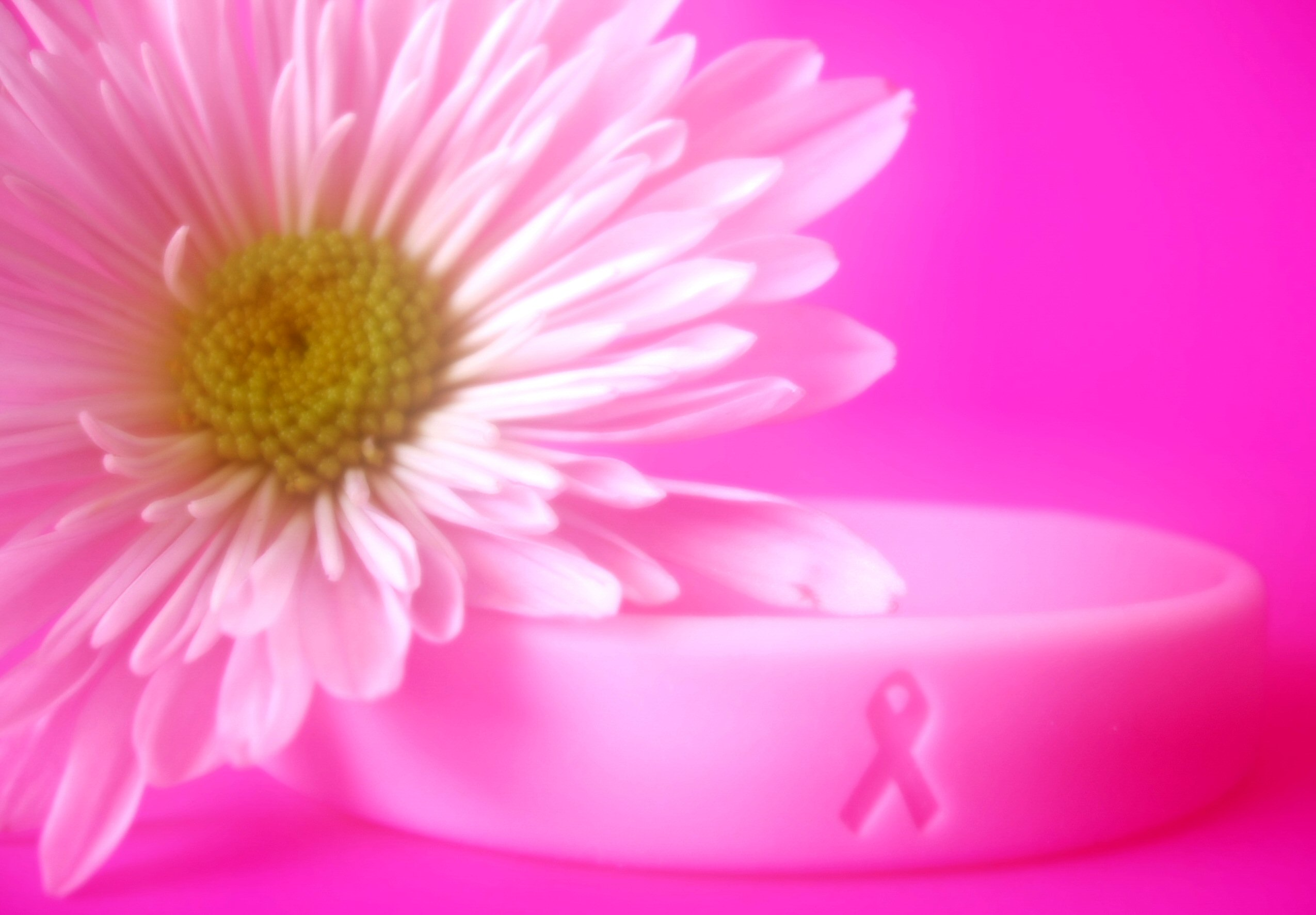 Post image for Breast Cancer Walks, Runs, and Fundraisers in Chicago