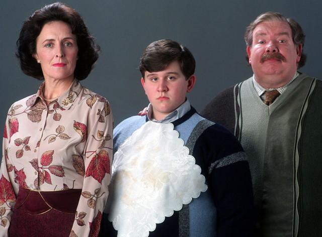 Post image for Have You Heard About the Dursleys?